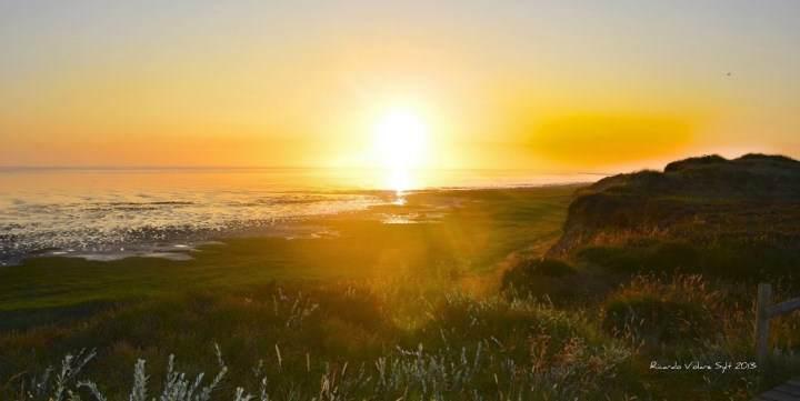 Morsum Kliff - nationales Geotop, Naturschutzgebiet & Sylter Sehenswürdigkeit
