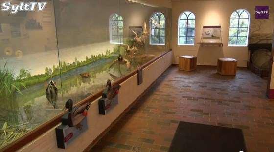 Die Vogelkoje in Kampen ist heute ein tolles Museum der Sylter Geschichte