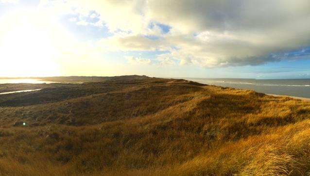 Die Dünenlandschaft im Sylter Norden
