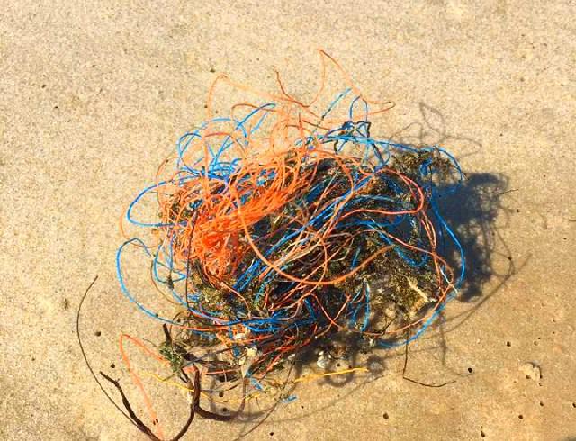Dolly Ropes, Bündel aus Plastikschnur, wie sie in Massen an den Strand gespült werden, die Meere massiv verschmutzen und für Tiere und Pflanzen eine Gefahr sind