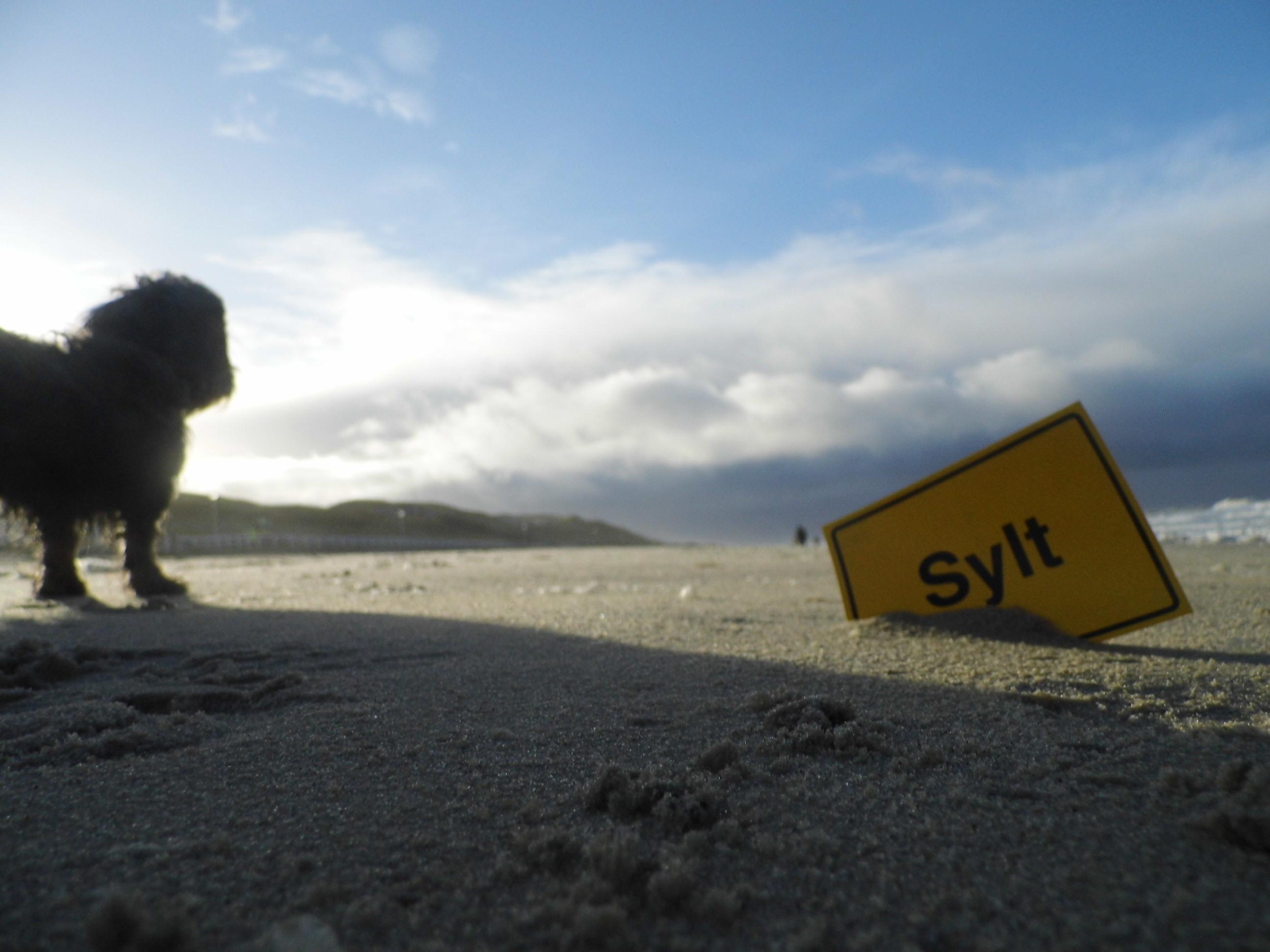 Winterurlaub auf Sylt